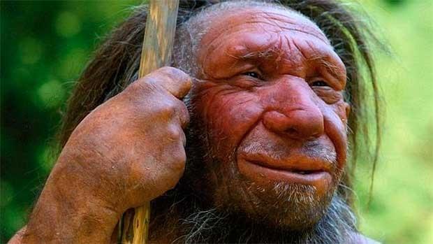 /index.php/curiosidades-en-la-red/33270/los-neandertales-se-extinguieron-por-estres-ante-la-llegada-del-homo-sapiens